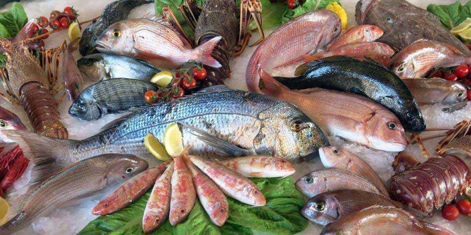 Recomendaciones alimentarias de pescado para evitar la exposición de mercurio