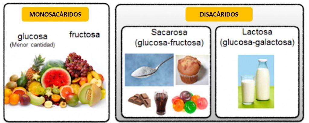 MONOSACÁRIDOS Y DISACÁRIDOS