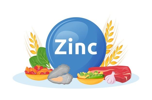 La imagen tiene un atributo ALT vacío; su nombre de archivo es Zinc.jpg
